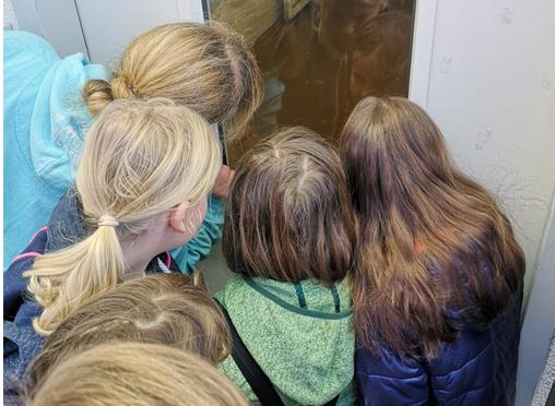 Jugendgruppe zu Besuch im Tierheim